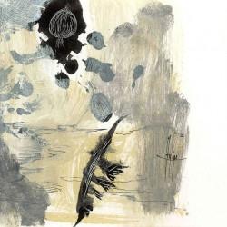2008 dibujo ilustraciones 5 pluma y semilla (2)